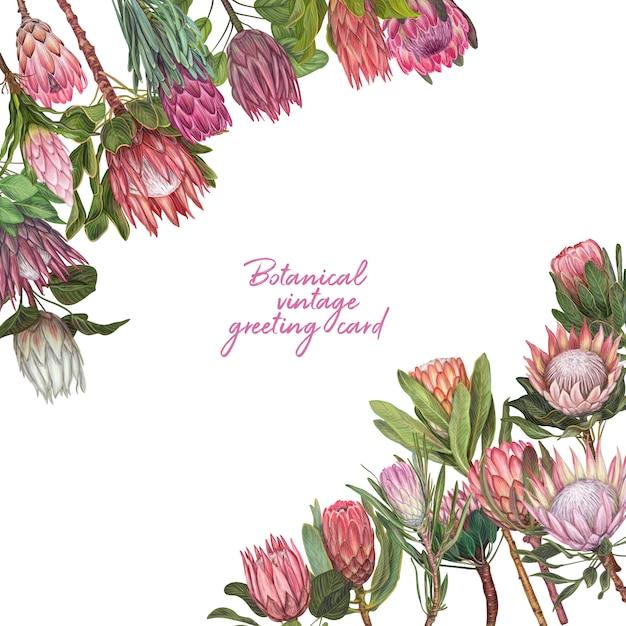 Mão desenhada vector flor ilustração Vetor Premium