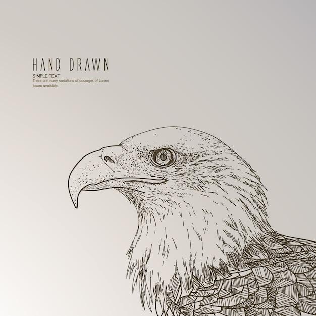 Mão, desenhado, águia Vetor grátis