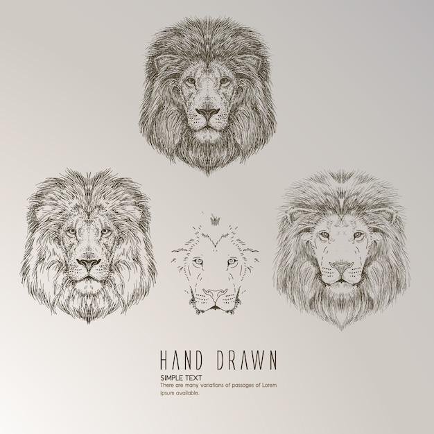 Mão, desenhado, leão, cabeça Vetor grátis