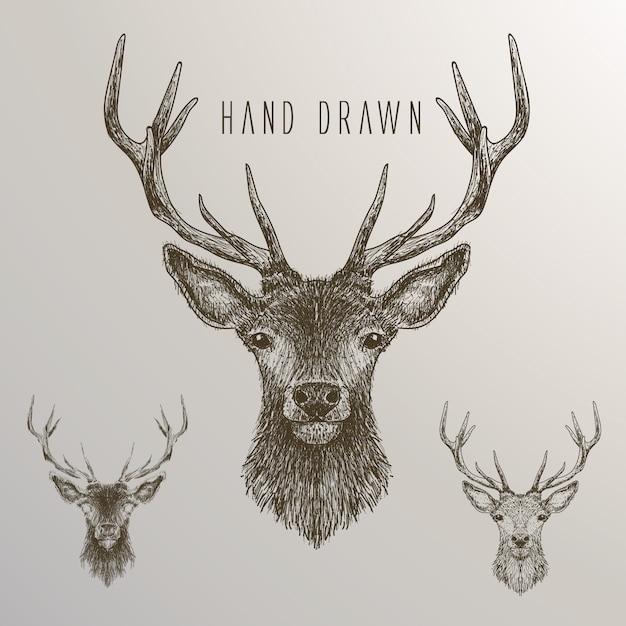 Mão, desenhado, veado, cobrança Vetor grátis
