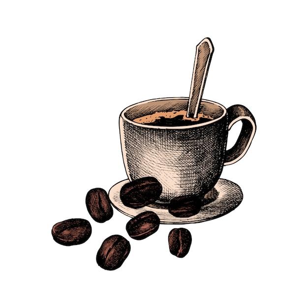 Mão drawm café e grão de café Vetor grátis