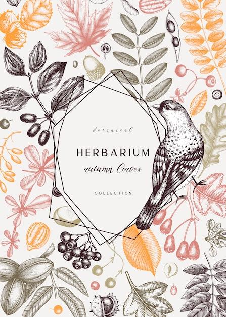 Mão esboçou cartão de outono em cores. modelo botânico elegante com folhas de outono, frutos, sementes e desenhos de pássaros. perfeito para convite, cartões, folhetos, menu, etiqueta, embalagem. Vetor Premium