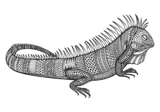Mão-extraídas gráfico ornamentado iguana com padrão étnico doodle. ilustração para colorir livro, tatuagem, impressão em t-shirt, bolsa. sobre um fundo branco. Vetor Premium