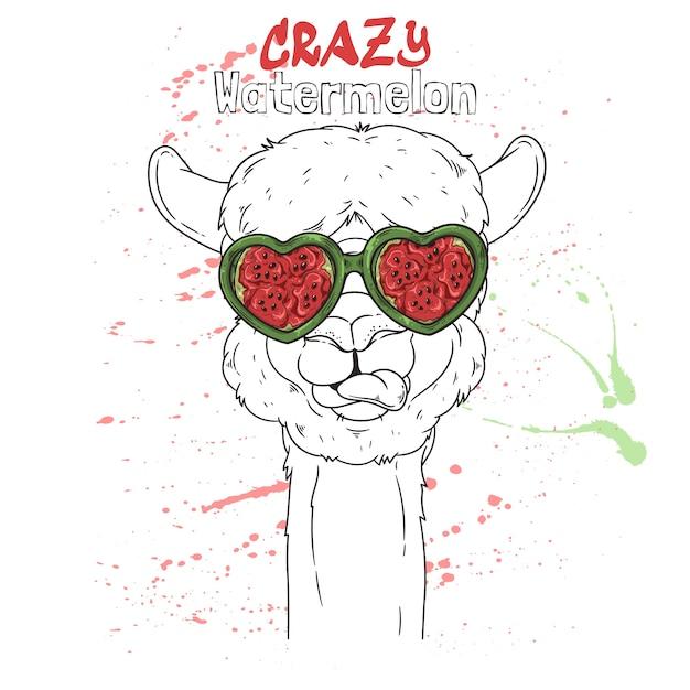 Mão ilustrações desenhadas. retrato de alpaca bonitinho em óculos de efeito melancia. Vetor Premium
