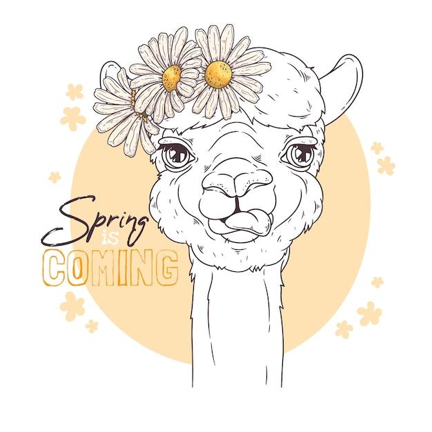 Mão ilustrações desenhadas. retrato de alpaca bonito com flores. Vetor Premium