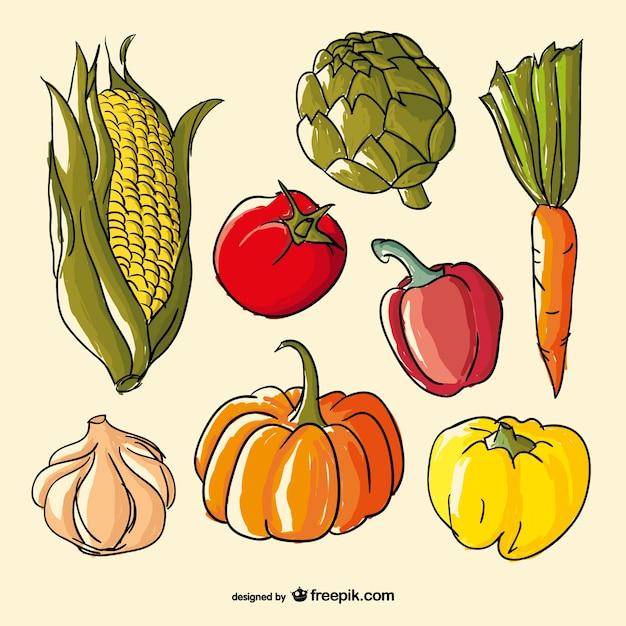 Mão vegetais de cor vetor desenhado Vetor grátis