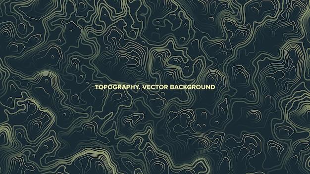 Mapa topográfico contorno relevo abstrato Vetor Premium