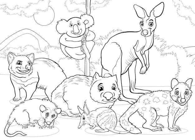 Marsupiais Desenhos Animados Para Animais Desenhos Para Colorir