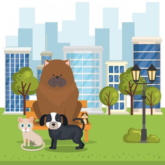 Mascotes bonitos e ícones de loja de animais Vetor grátis