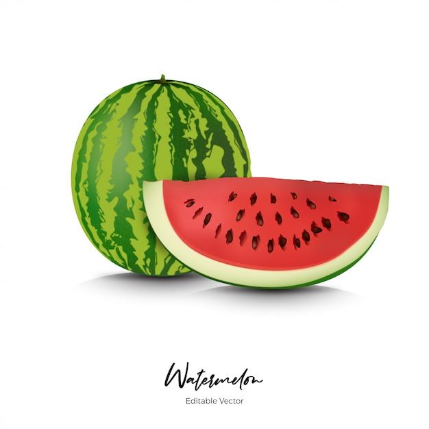 Melancia frutas realista Vetor Premium