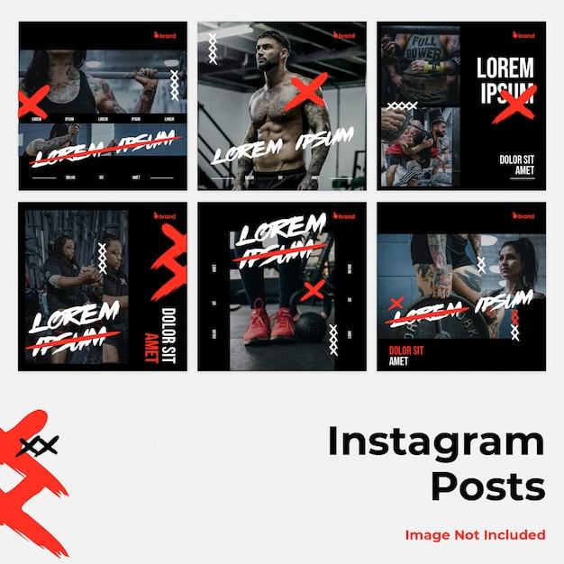 Mídia social instagram banner feroz Vetor Premium
