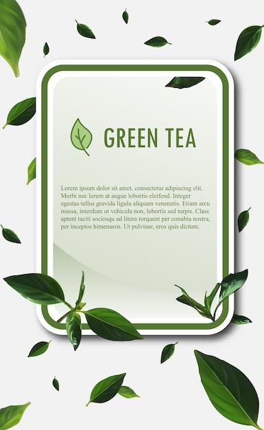 Modelo de banner de chá verde. ilustração do vetor de chá verde. Vetor Premium