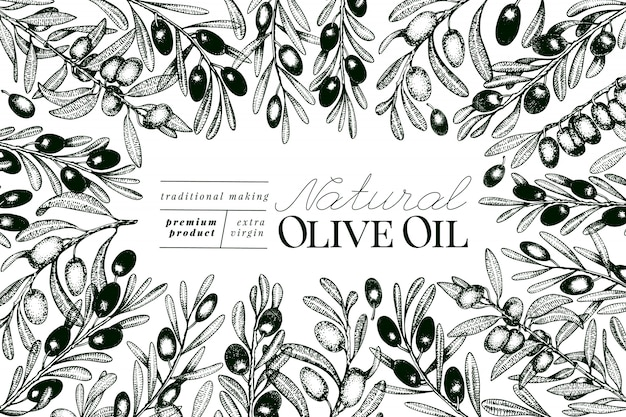 Modelo de banner de oliveira. Vetor Premium