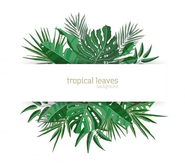 Modelo de banner horizontal decorado com folhagem verde de plantas de paraíso tropical ou folhas de palmeira exótica verde. composição havaiana elegante. ilustração em vetor realista sazonal colorida. Vetor Premium