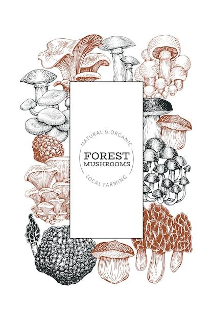 Modelo de cogumelo. mão desenhada comida ilustração. Vetor Premium