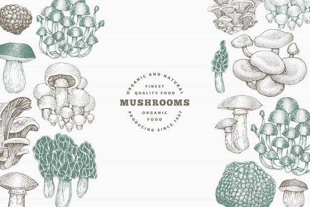 Modelo de design de cogumelos. vetorial mão ilustrações desenhadas. cogumelo em estilo retro. comida de outono. Vetor Premium
