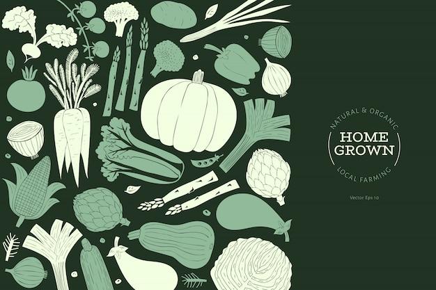 Modelo de design de legumes desenhada mão dos desenhos animados Vetor Premium