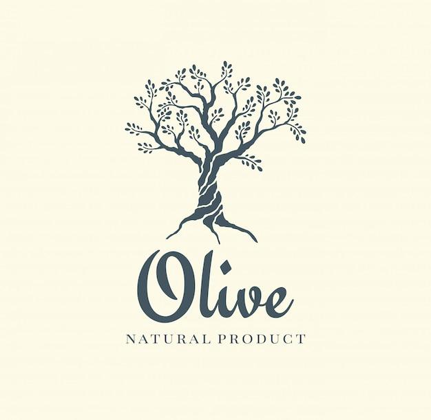 Modelo de design de logotipo de vetor de oliveira para óleo Vetor Premium