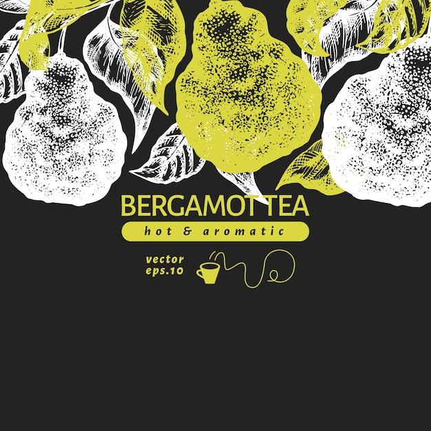 Modelo de design de ramo de bergamota. quadro de limão kaffir. Vetor Premium