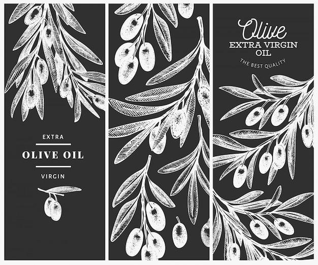 Modelo de design do ramo de oliveira. Vetor Premium