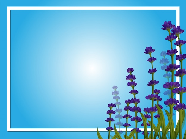 Modelo de fronteira com flores de lavanda Vetor grátis