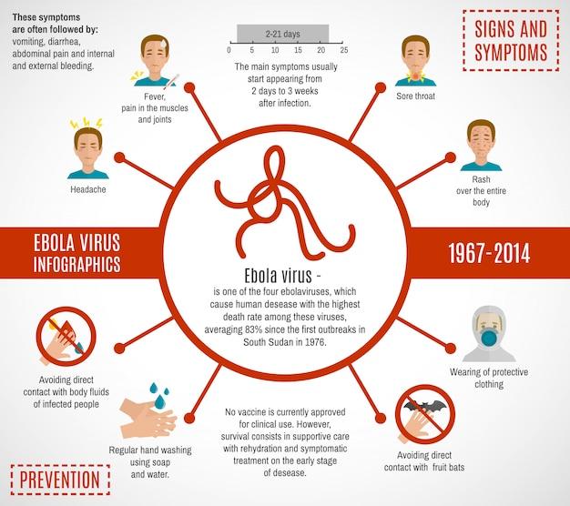 Modelo de infográfico de vírus ebola Vetor Premium