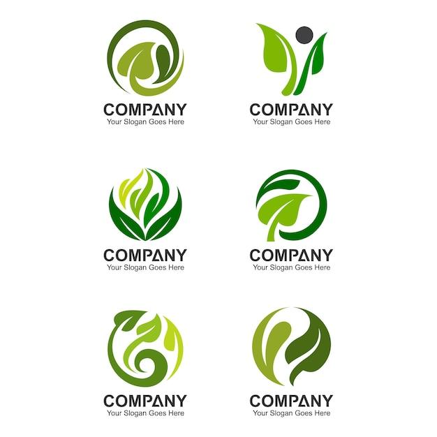 Modelo de logotipo de folha abstrata, ícones de folha, conjunto de logotipo verde Vetor Premium