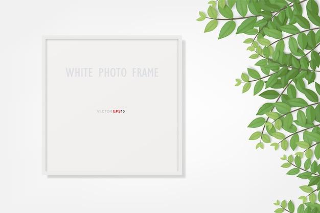 Molduras para fotos e folhas verdes. Vetor Premium