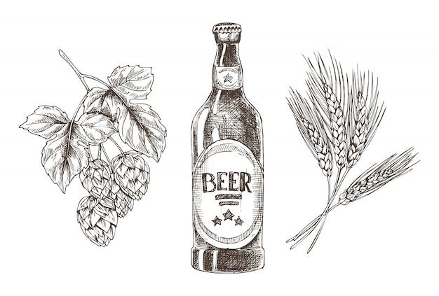 Molhos de lúpulo e trigo ingredientes isolados de cerveja Vetor Premium