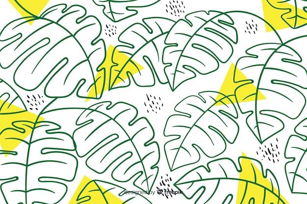 Monstera incolor deixa o fundo Vetor grátis