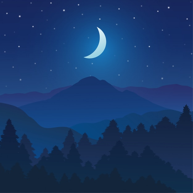 Montanhas e paisagem da floresta com o céu da noite e estrelas Vetor Premium