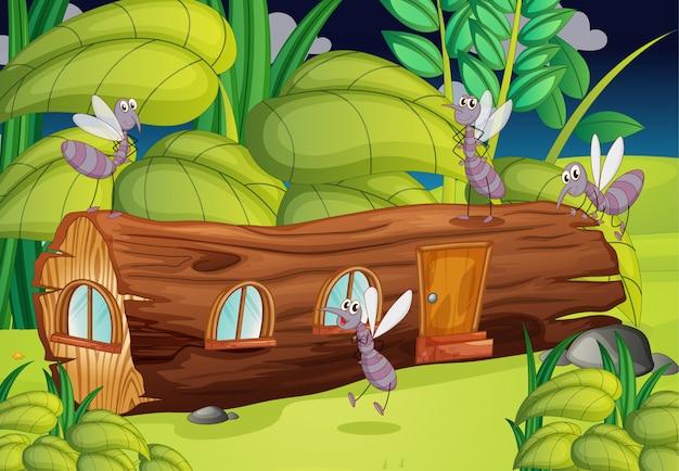 Mosquitos e uma casa de madeira Vetor grátis