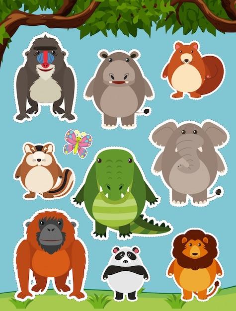 Muitos animais selvagens no campo Vetor grátis