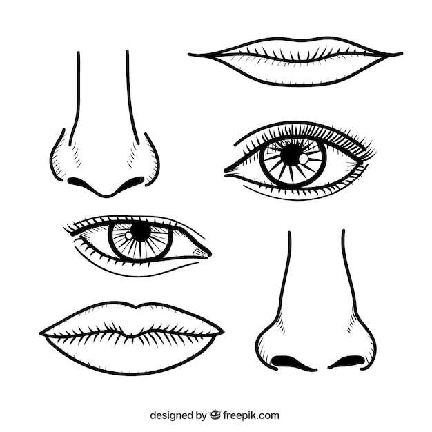 Nariz e lábios em estilo desenhado mão Vetor grátis