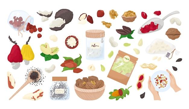 Nozes, sementes isoladas em uma coleção branca de. alimentação saudável, amêndoas orgânicas, nozes, avelãs e amendoins. lanche ou dieta saudável vegetariana. kernels. nutrição de sementes. Vetor Premium