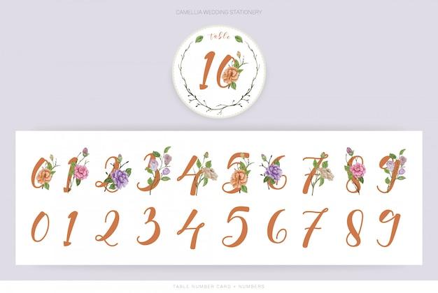 Números de aquarela camélia flor Vetor Premium