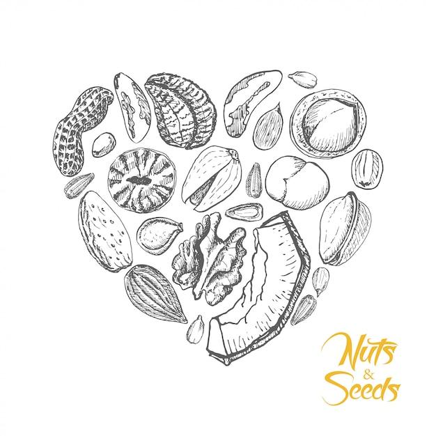 O coração isolado de nozes e sementes Vetor Premium