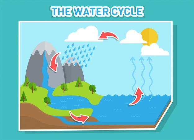 O diagrama do ciclo da água mostra o ciclo da água, das gotas de água às gotas de chuva. Vetor Premium
