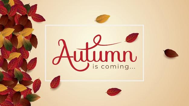 O outono é cominglayout decora com molde da ilustração do vetor das folhas. Vetor Premium