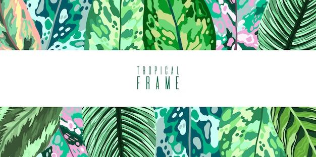 O verão tropical do quadro deixa a coleção do diffenbachia. Vetor Premium