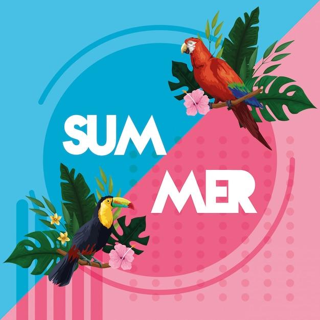 Olá cartão de cartão de verão Vetor grátis