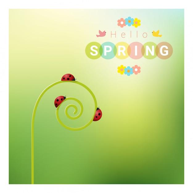 Olá fundo de primavera com joaninhas vermelhas Vetor Premium