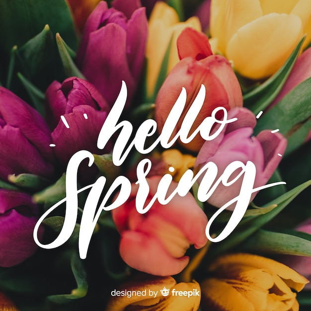 Olá letras de primavera com foto Vetor grátis