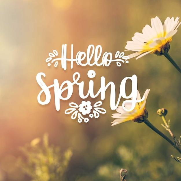 Olá letras de primavera com tema de foto Vetor grátis