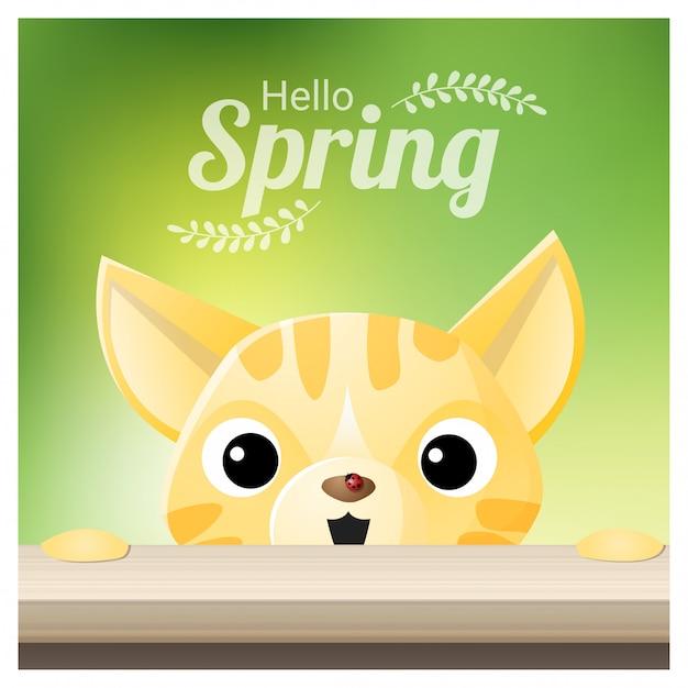 Olá primavera temporada fundo com um gato Vetor Premium