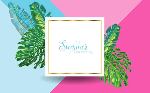 Olá verão tropical design com folhas de palmeira Vetor Premium