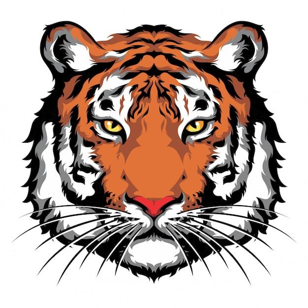 Olhar dianteiro da cabeça do tigre Vetor Premium
