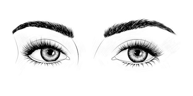 Olhos com sobrancelhas e cílios longos Vetor Premium