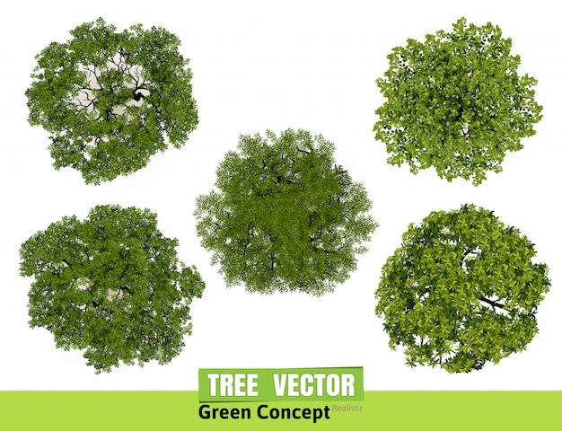 Opinião superior das árvores para a ilustração do vetor da paisagem. Vetor Premium