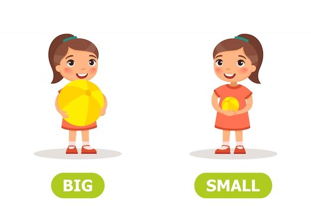 Opostos de um grande e pequeno Vetor Premium